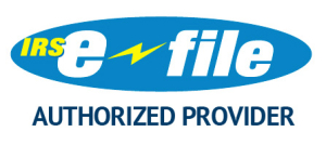 e-file-authorized-provider